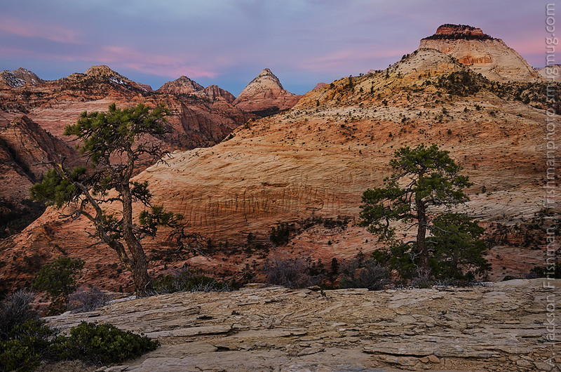 Dawn over the East Temple and Bridge Mountain, Zion National Park, Utah, March 2013.