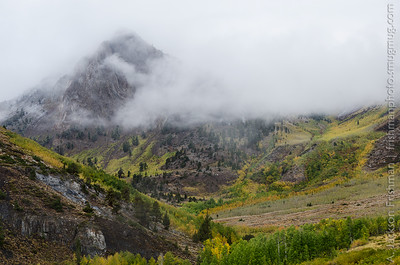 Fall aspens and mist-shrouded slopes of Baldwin Peak and McGee Creek Canyon, John Muir Wilderness, California, September 2014.